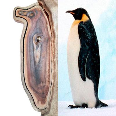 Wooden penguin