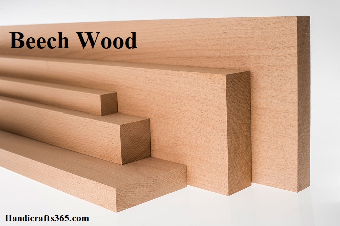Beech wood for carving