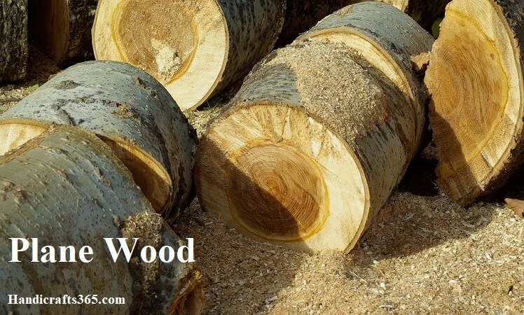 Plane Wood for wood carving